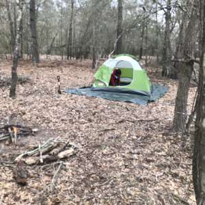 Briers Primitive Camping