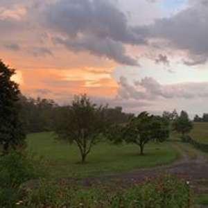 TuckerBerry Farm