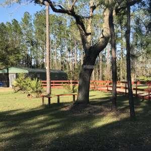 Omega Ranch - Land