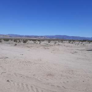 Pepper's coyote flats