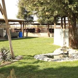 Cowboy Land & Livestock
