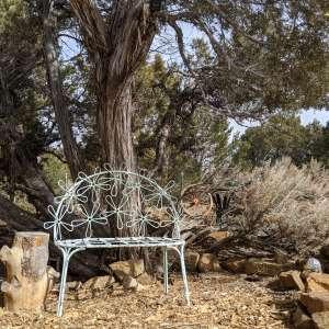 Black Burro Ranch