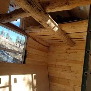 Tiny Woodsy Cabin