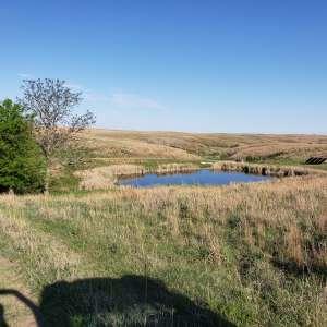 Brian A.'s Land