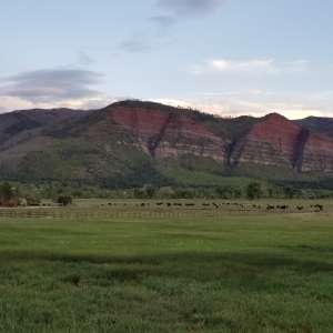 Animas Valley red cliff view