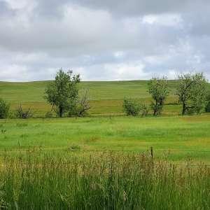 Lara H.'s Land