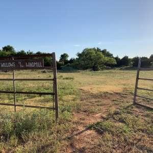 Lacey B.'s Land