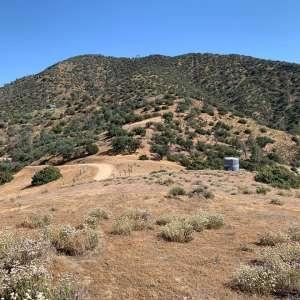 Nathan P.'s Land