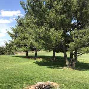 Sycamore Hills