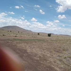 Tameka W.'s Land