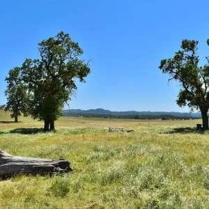 Garce H.'s Land