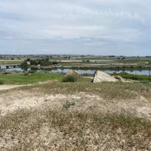 Elizabeth  M.'s Land
