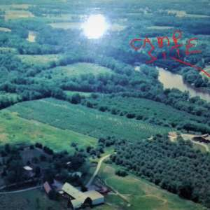 Bruce C.'s Land