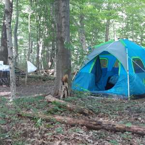 Retreat Campsites