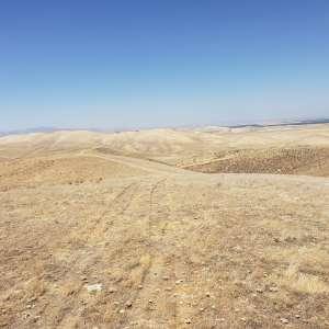 Elida C.'s Land