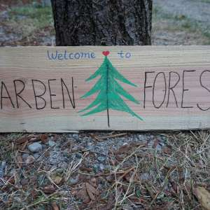 Carben Forest