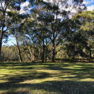 Tullarwalla South Coast Camping