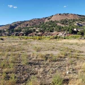 Tara K.'s Land