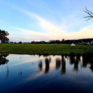 Country Journey, Boxgrove farm