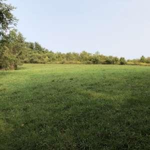 William Tennelle Family Farm