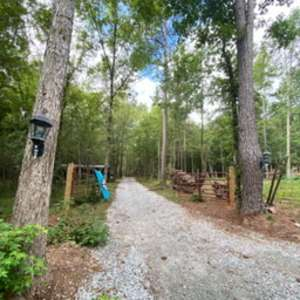 Beloved Cabin Homestead & Stay