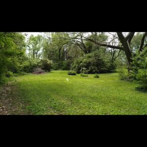 Rhonda T.'s Land
