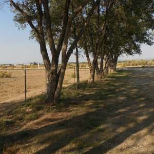 Horse Property in Cedar City