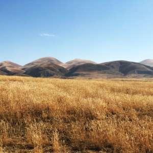 Heritage ~ Carrizo Plains