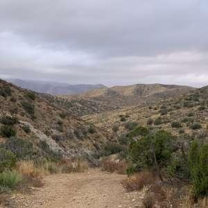 Allen S.'s Land