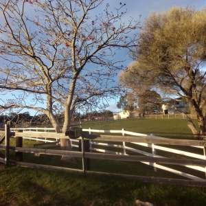 Elliott Day Farm