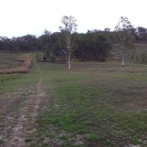 Greg And Pat J.'s Land