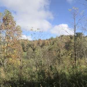 Appalachian Farm and Land