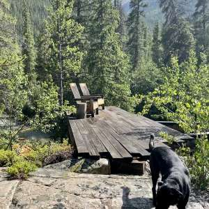 Moose Crossing Campsites