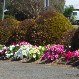 Rathdowney Memorial Grounds