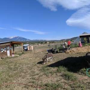 Folk Farm, Salida