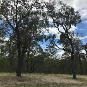 Cheriton Bush Camp