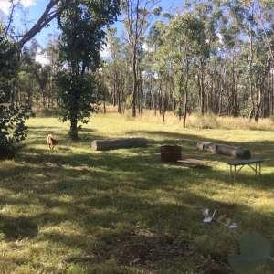 Billywood, near Bathurst