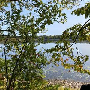Edgewater Camping