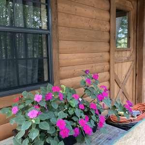 Faith Acres Farm Cabin