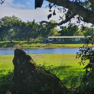 Dominique B.'s Land