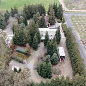 Redwood Haven