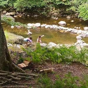 River Pool Campsite