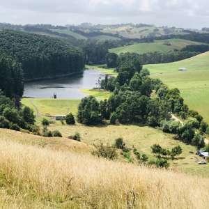 Paul W.'s Land