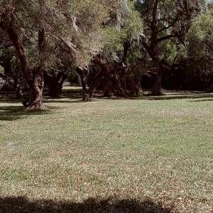 Barbara K.'s Land
