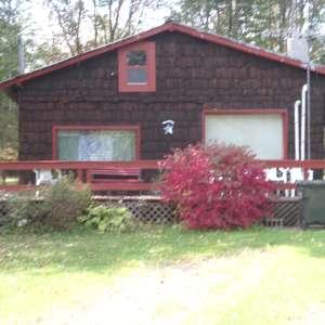 Knotty Pine Cabin!