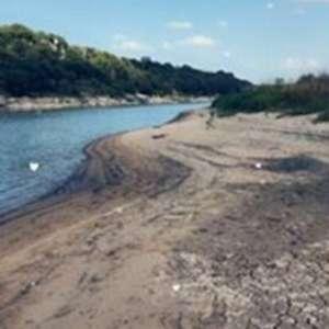 Sandy  V.'s Land