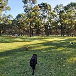 Hawkesbury Park-like Acres