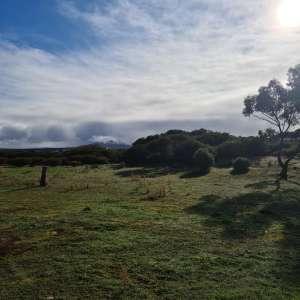 Anne T.'s Land