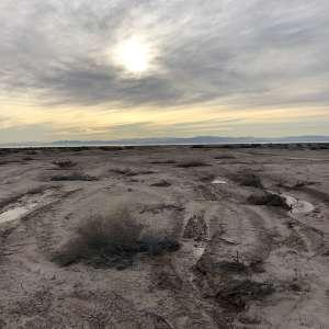 Sara M.'s Land