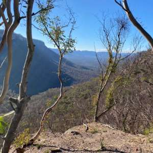Wolgan View
